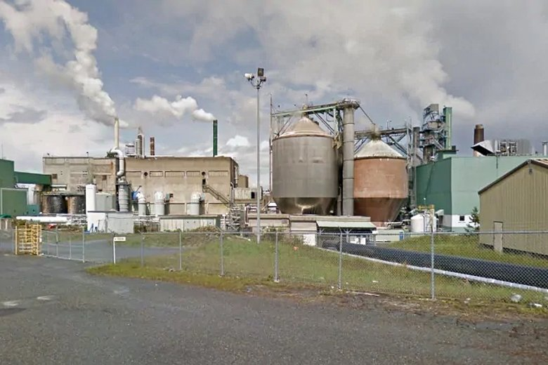 Nanaimo-mill-working-full-speed-to-make-pulp-for-medical-masks,-gowns